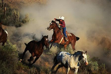 Cowboys kennenlernen